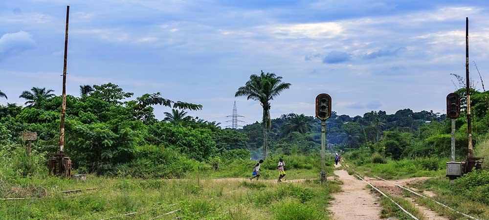 Congo – Bonobos